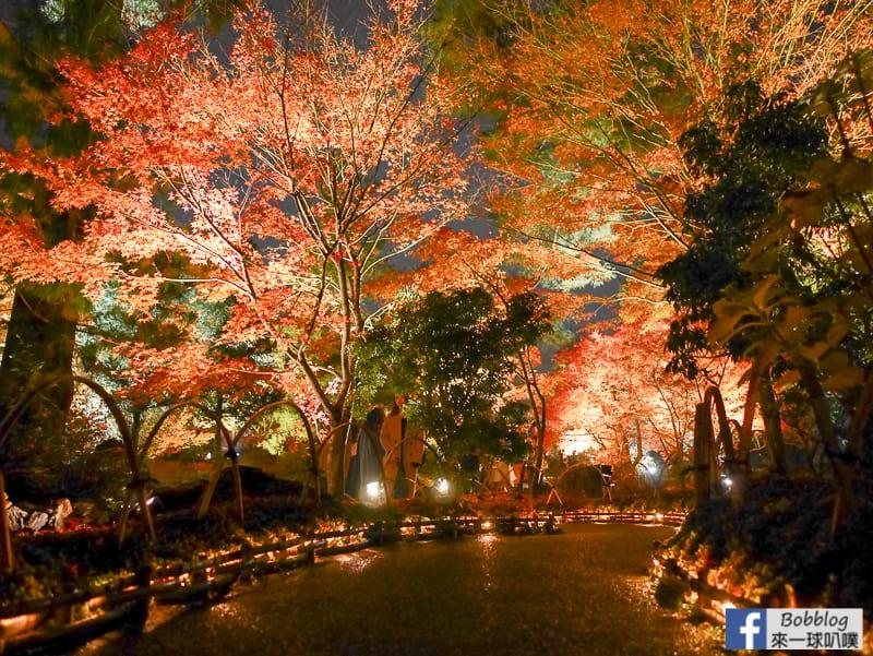 延伸閱讀:京都嵐山夜楓景點|寶嚴院楓葉、獅子吼庭園(越夜越美麗)