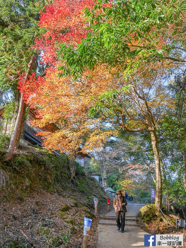 Jingoji-Temple-16