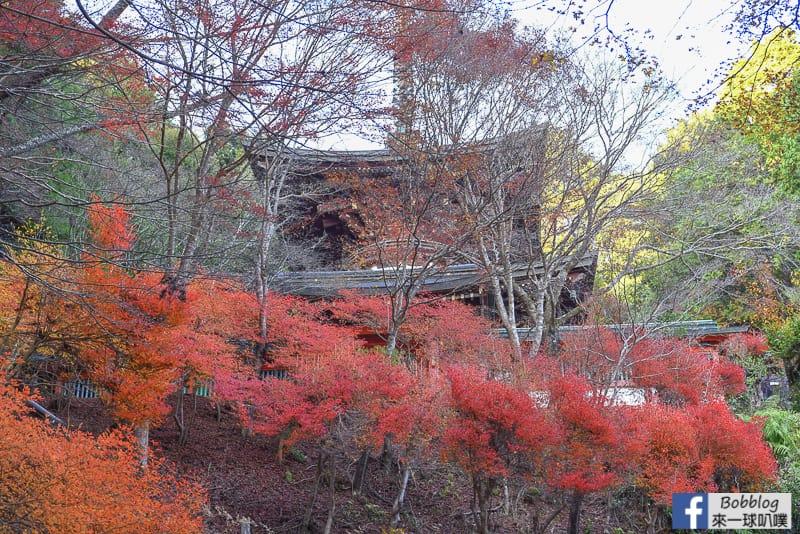 Jingoji-Temple-31