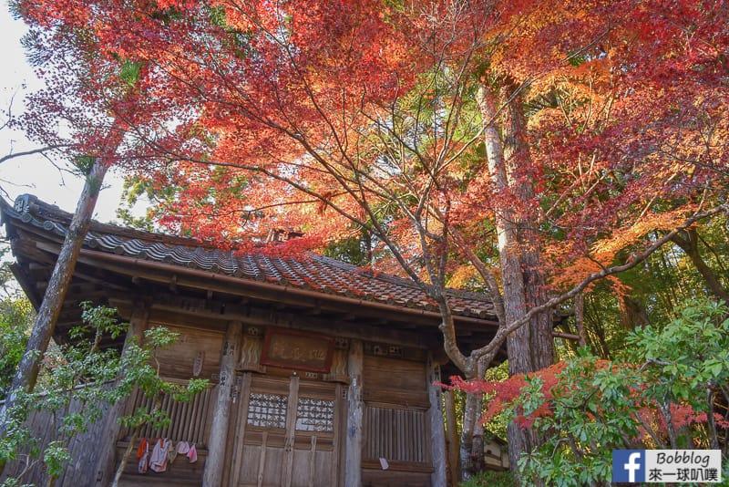 Jingoji-Temple-35