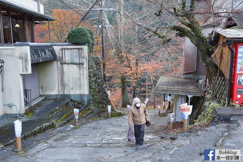 Jingoji-Temple-45
