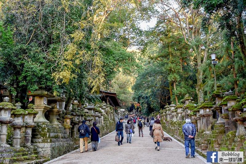 Kasuga-Taisha-Shrine-15