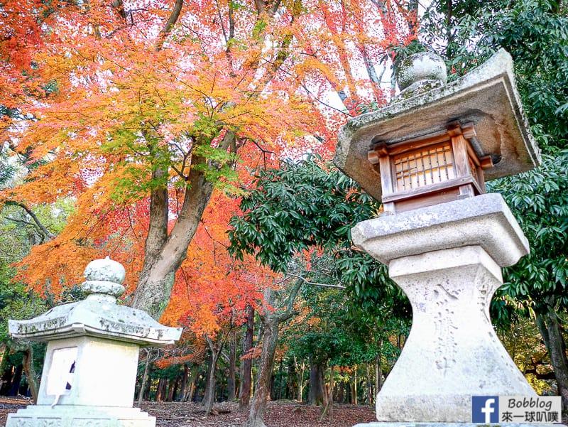 Kasuga-Taisha-Shrine-3