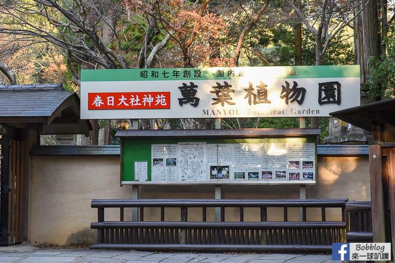 Kasuga-Taisha-Shrine-7