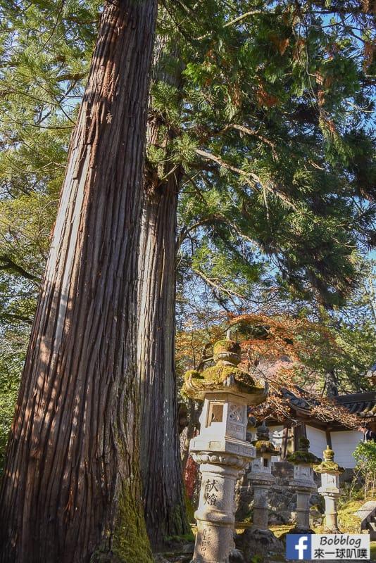 kyoto-saimyoji-temple-20