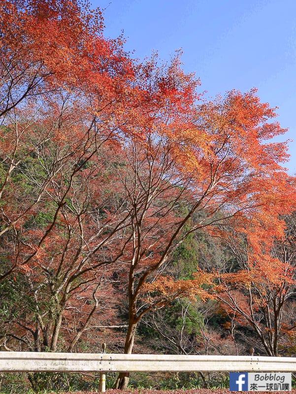 kyoto-saimyoji-temple