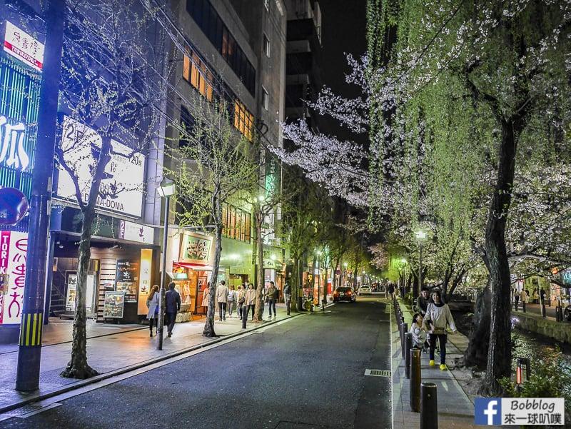Takasegawa-night-sakura-10