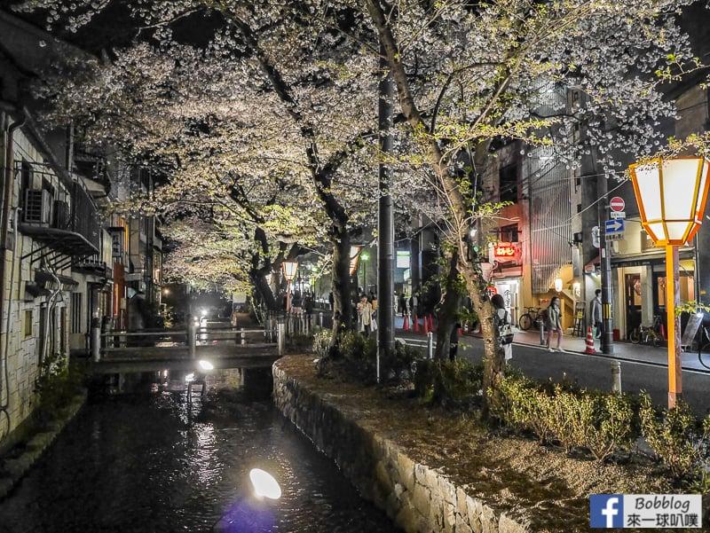 Takasegawa-night-sakura-19