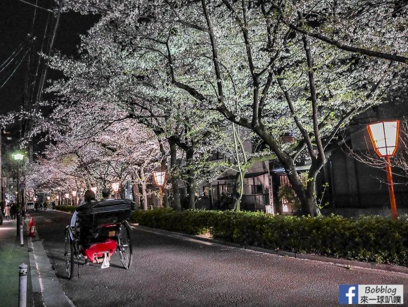 Takasegawa-night-sakura-20
