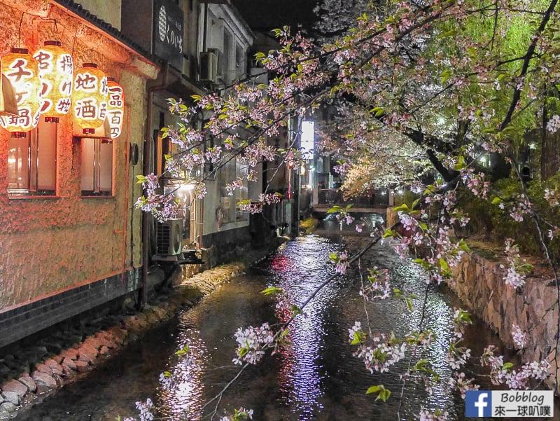 Takasegawa-night-sakura-4