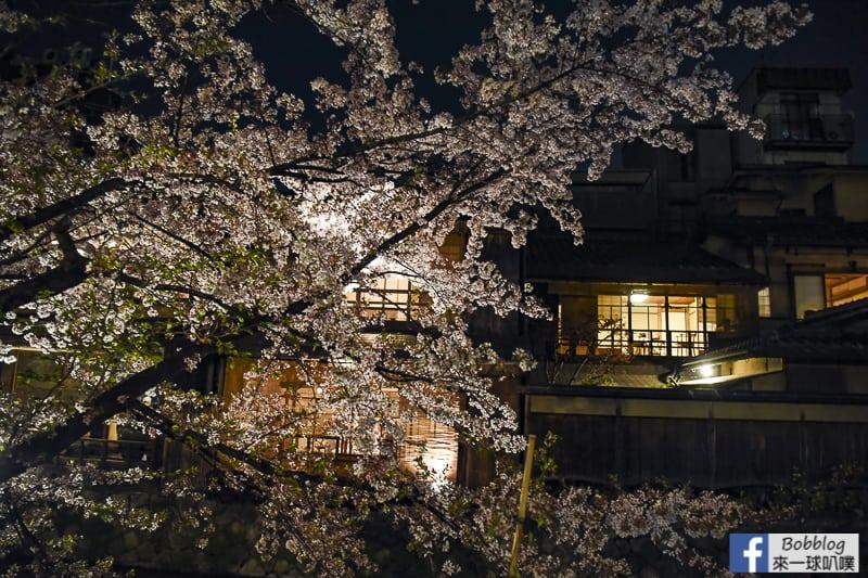 Tatsumi-Bridge-sakura-22