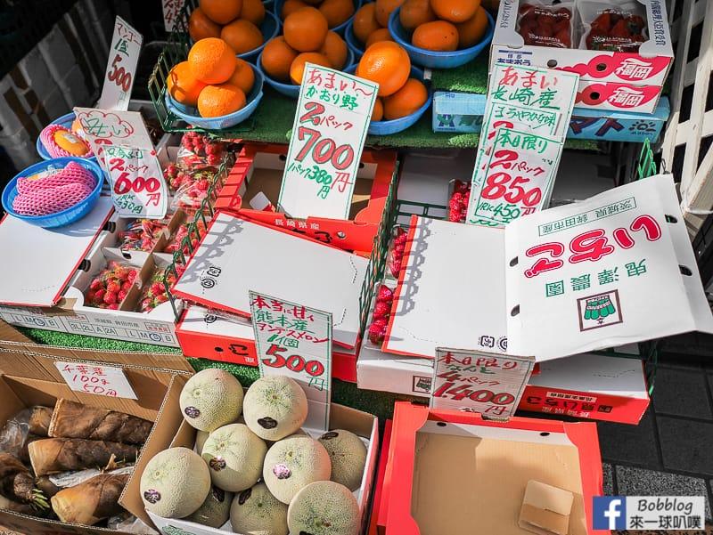 yanaka-ginza-shopping-street-17