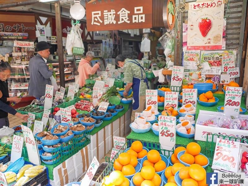 yanaka-ginza-shopping-street-18