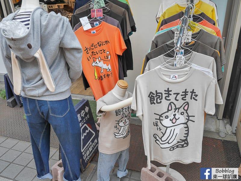 yanaka-ginza-shopping-street-50