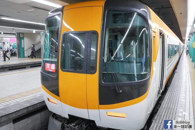 nara-limited-express-17