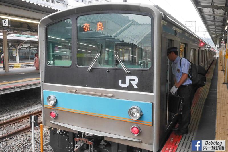 nara-limited-express-8