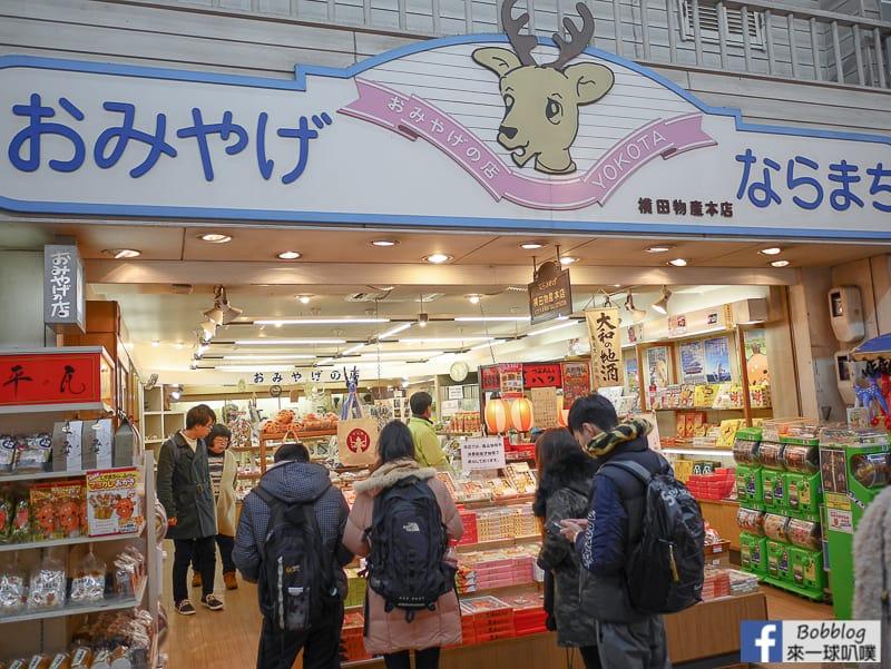 nara-shopping-street-7