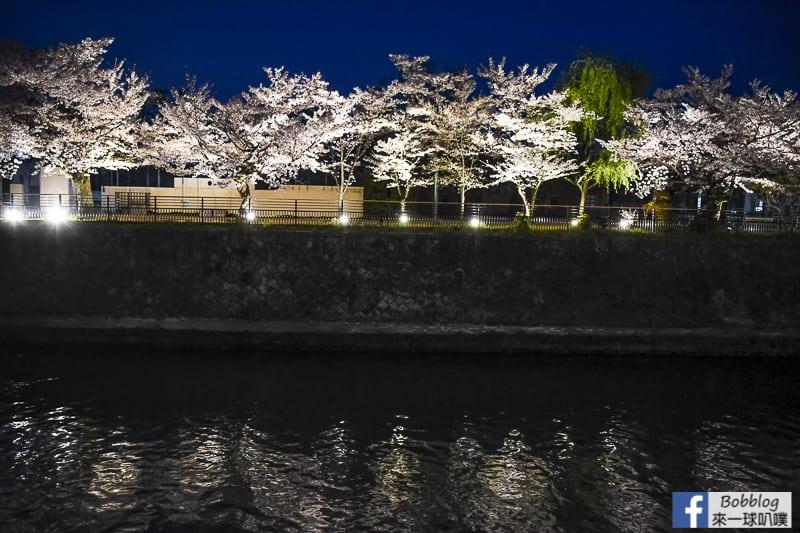 okazaki-canal-sakura-11