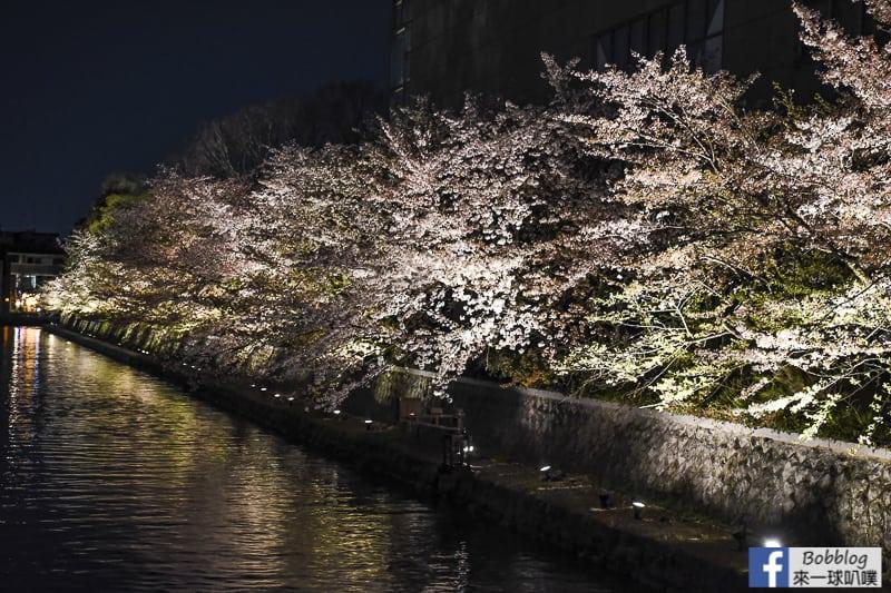 okazaki-canal-sakura-22