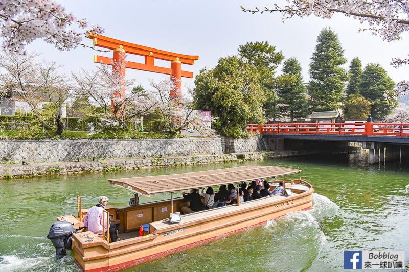 京都蹴上傾斜鐵道櫻花(美麗鐵軌櫻花,京都人氣賞櫻景點)