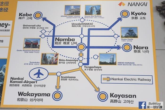 NANKAITRAIN-2
