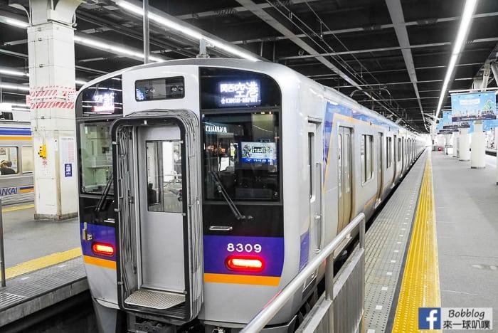 nankai-limited-express-train-7