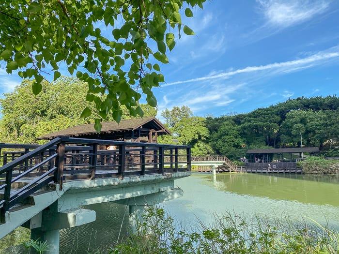 Hsinchu park 40