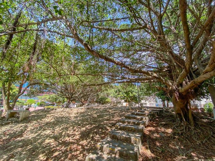 Boai park 11