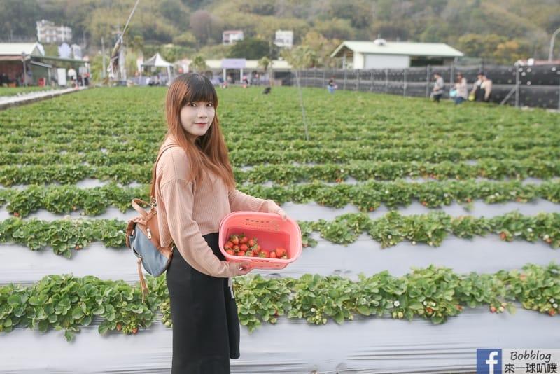 網站近期文章:苗栗大湖採草莓地點注意事項、大湖酒莊買紀念品、吃草莓香腸冰淇淋