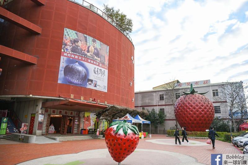 strawberry-81
