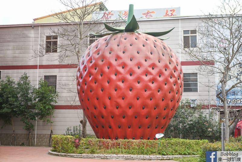 strawberry-82