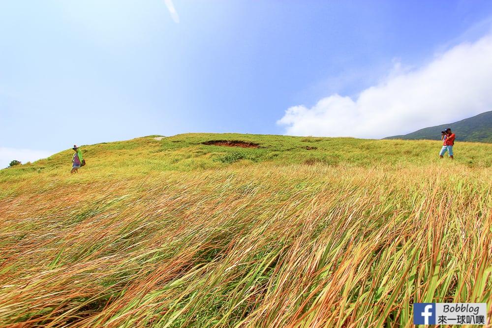 Lan-Yu-Cing-Cing-Grass-25