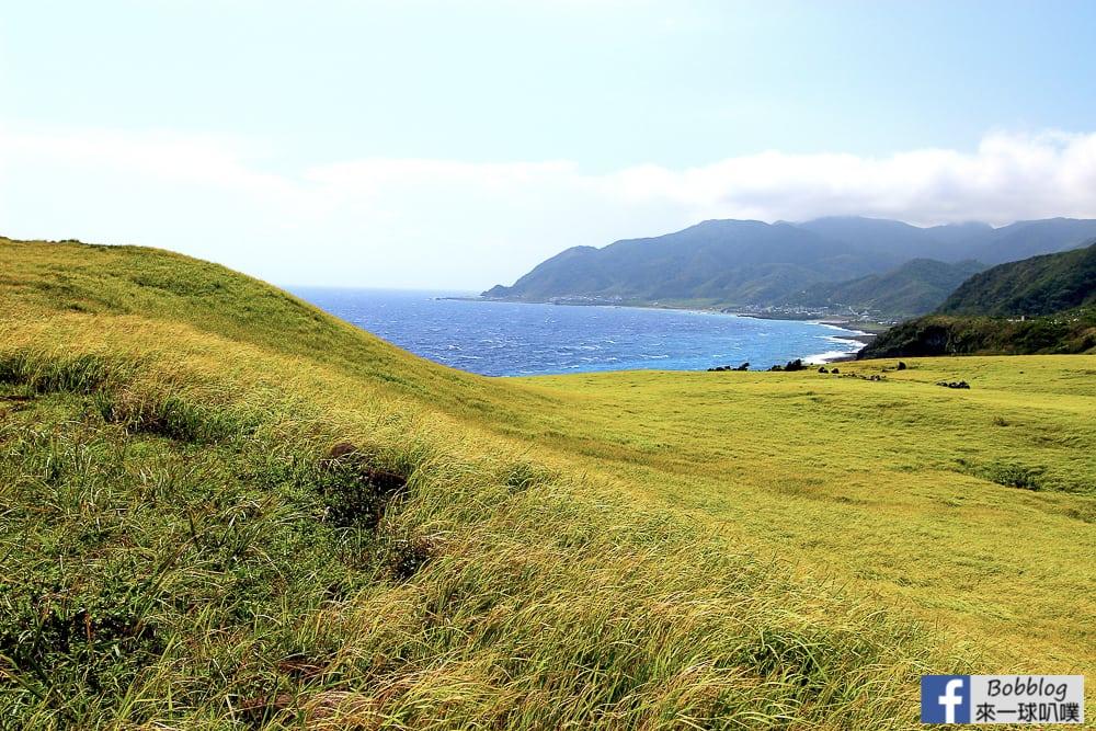 Lan-Yu-Cing-Cing-Grass-32
