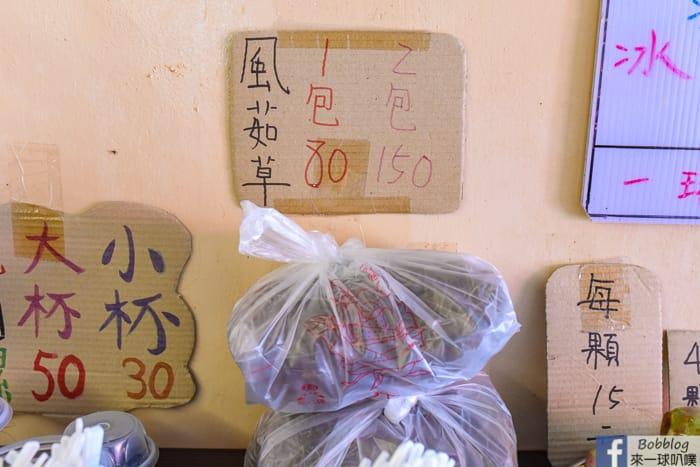 Chiang cactus ice cream 7