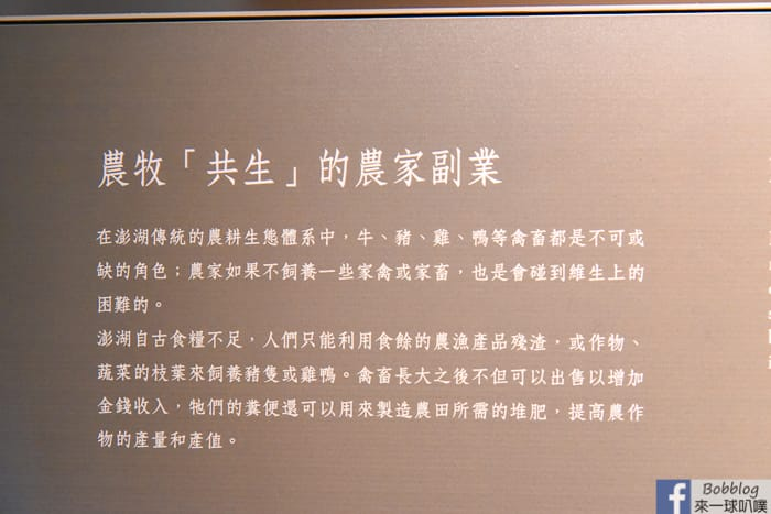 Penghu-Living-Museum-26
