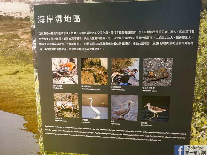 penghu-ocean-resources-museum-14