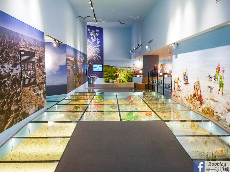 penghu-ocean-resources-museum-18