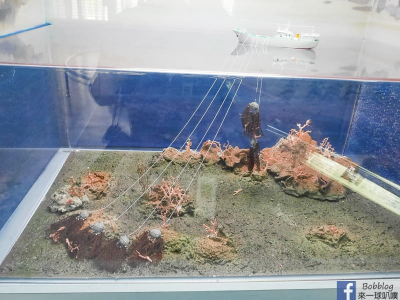 penghu-ocean-resources-museum-29