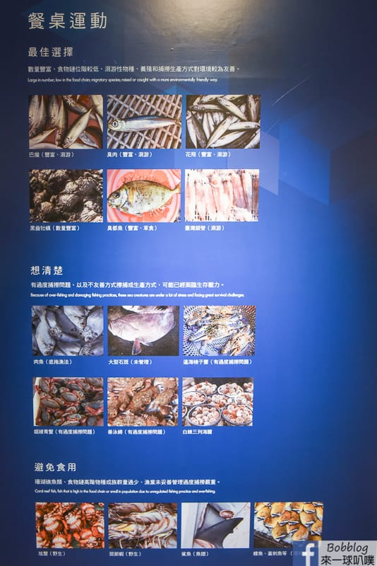 penghu-ocean-resources-museum-9
