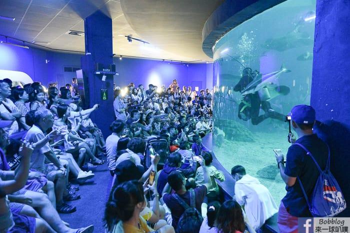 penghu-aquarium-12