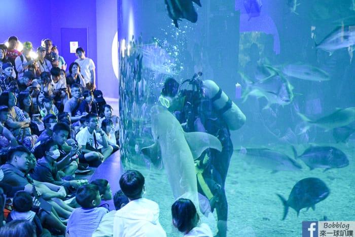 penghu-aquarium-13