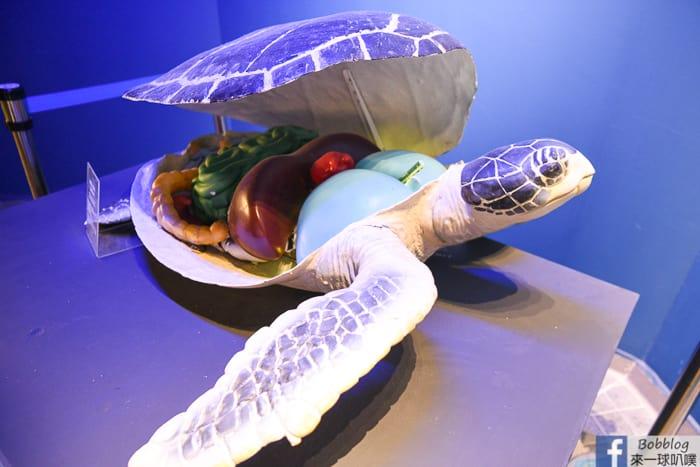 penghu-aquarium-15