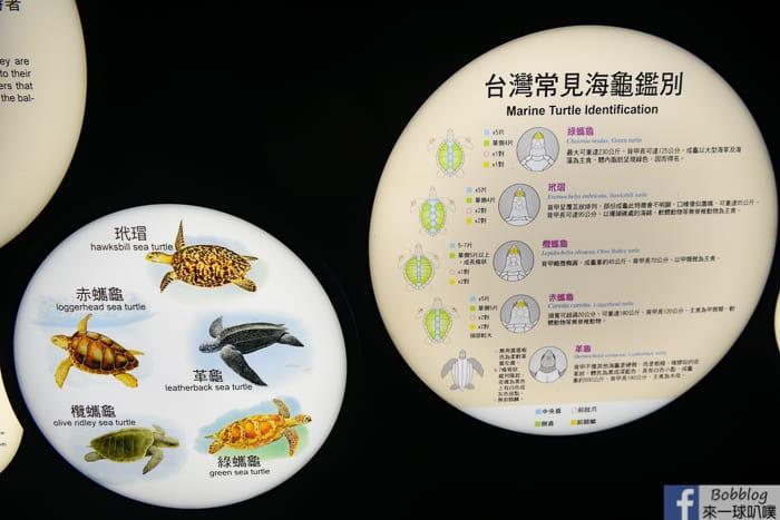 penghu-aquarium-23