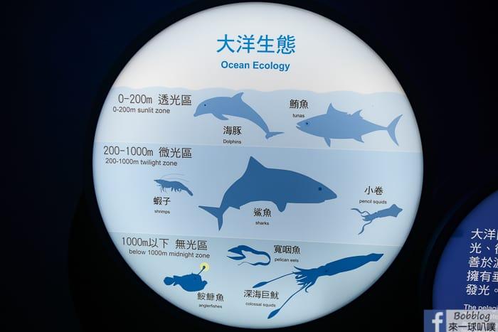 penghu-aquarium-24
