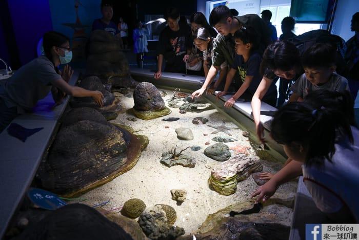 penghu-aquarium-29