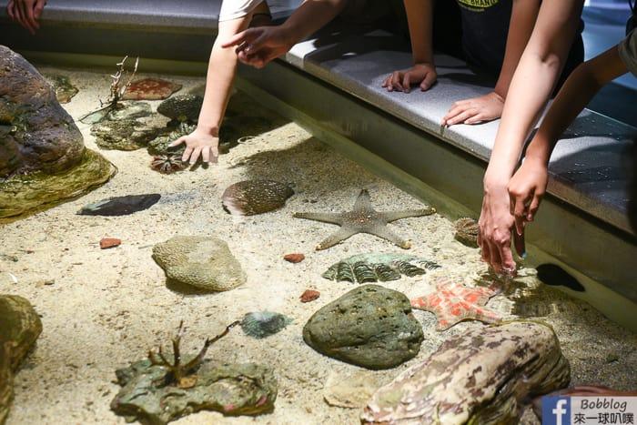penghu-aquarium-30