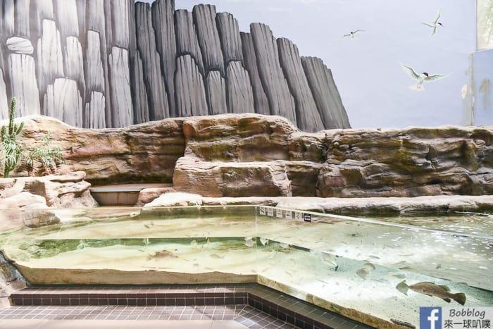 penghu-aquarium-9