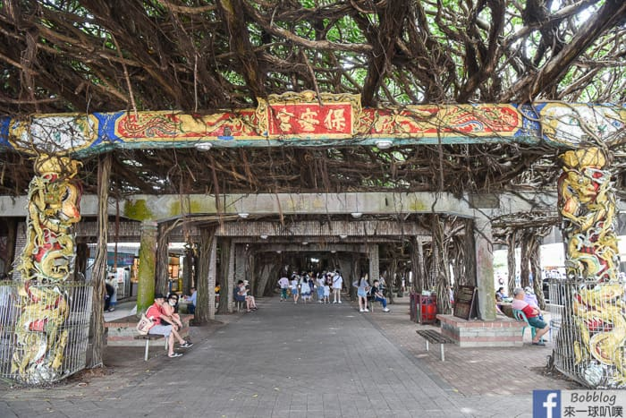 Penghu northern travel 37