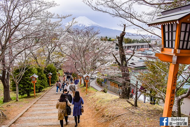 Arakurayama Sengen Park-12