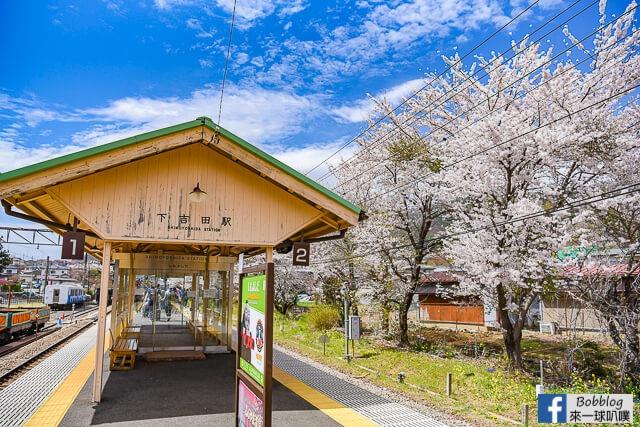 Arakurayama Sengen Park-4